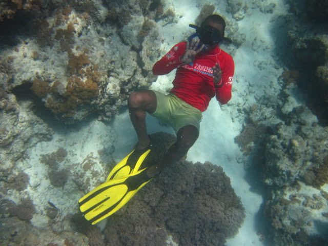 actividades-snorkel-mnemba-island-zanzibar-snorkel