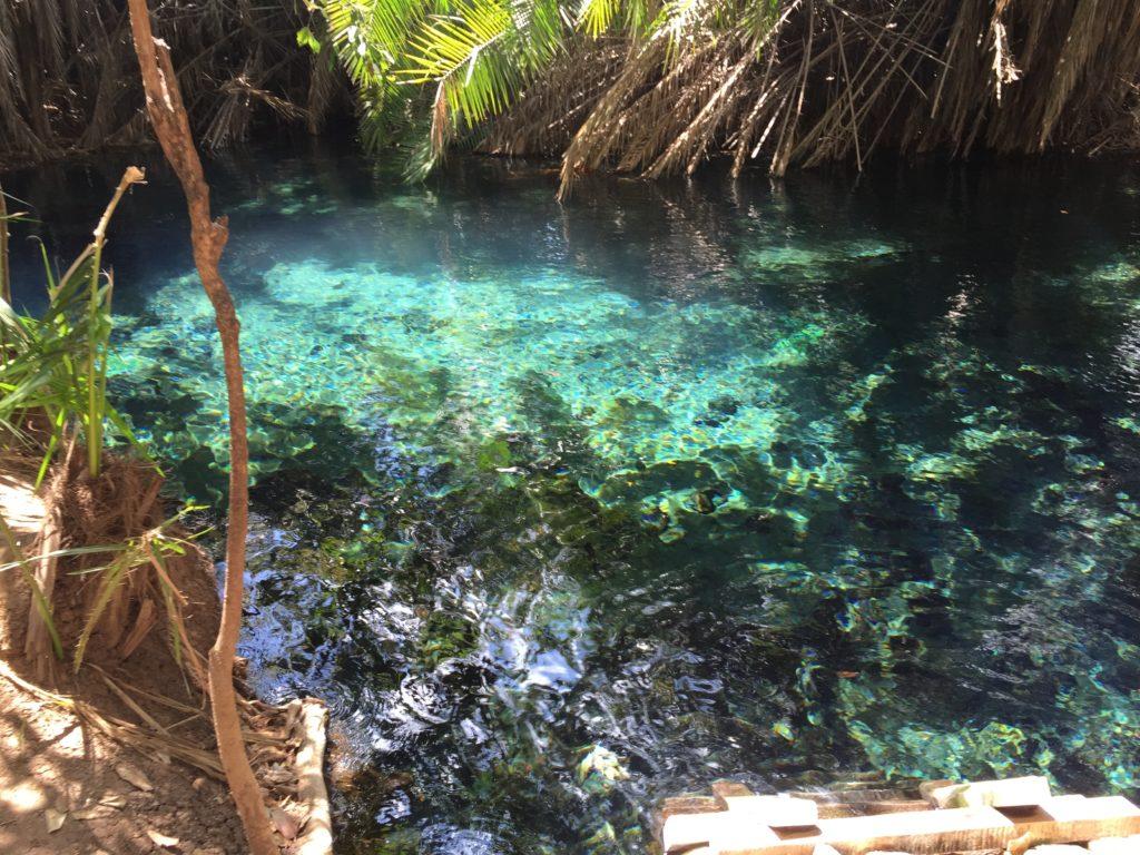actividades-tanzania-hot-springs-naturaleza